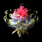 〈PC MUSIC〉より最新のリリースが到着。Danny L Harleによる「Super Natural feat. Carly Rae Jepsen」。